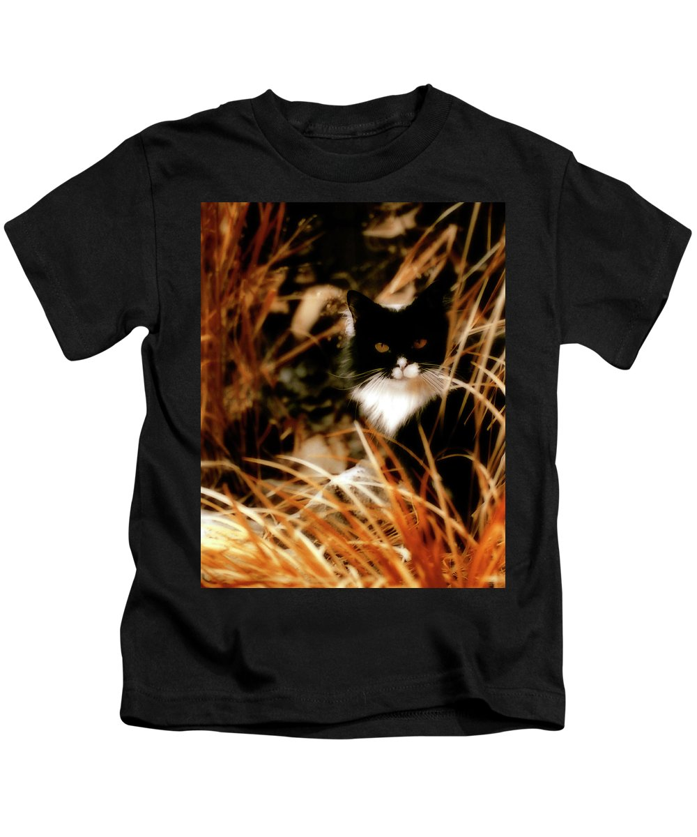 Cat Kids T-Shirt featuring the photograph Cat In The Golden Grass by Gothicrow Images