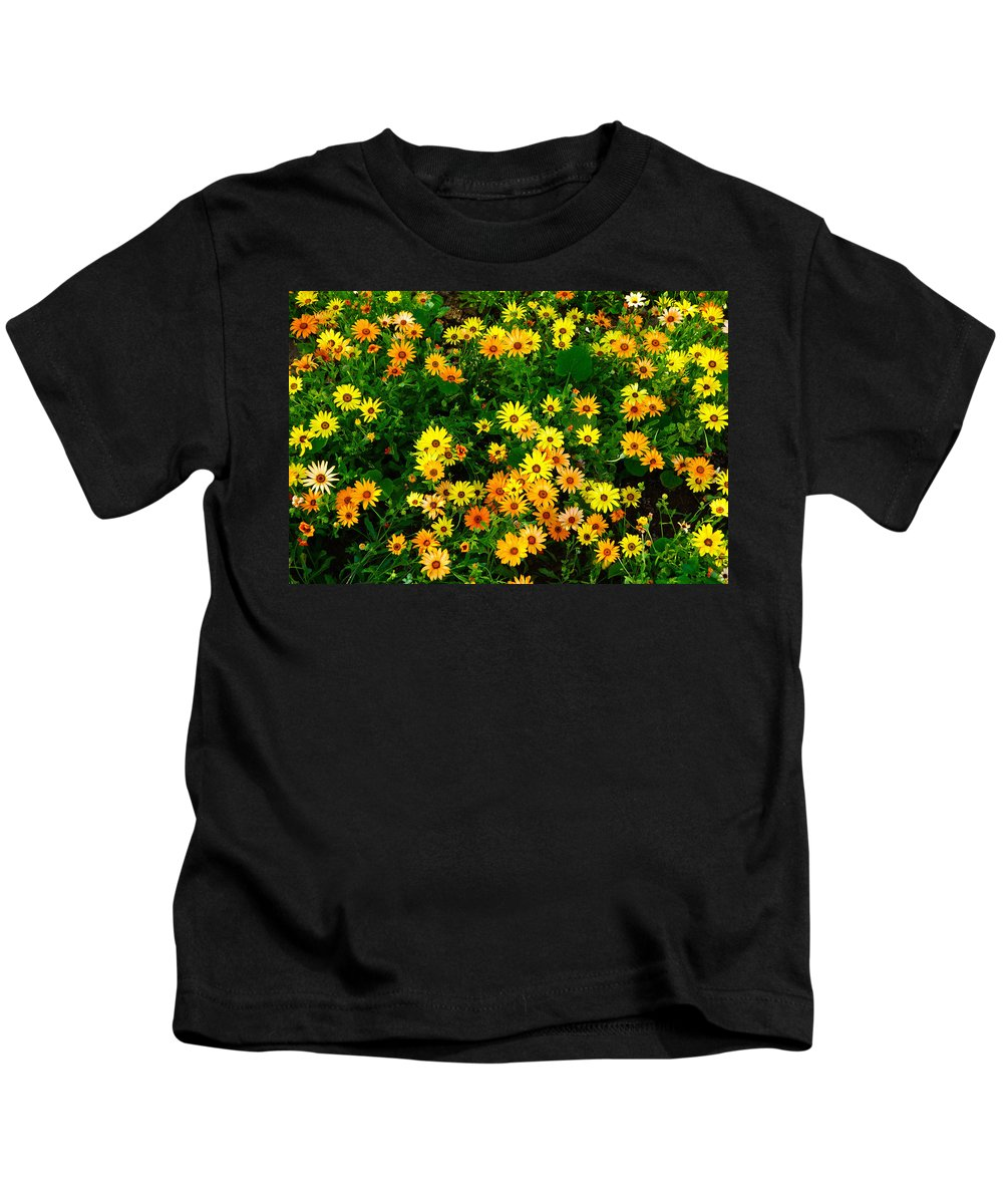 Celebration Kids T-Shirt featuring the photograph Celebration Of Yellows And Oranges Study 3 by Robert Meyers-Lussier