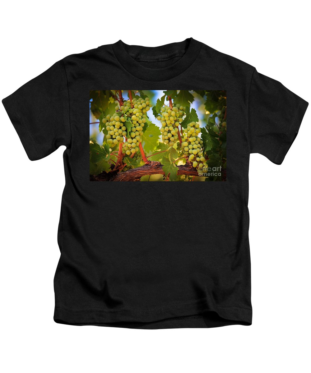 America Kids T-Shirt featuring the photograph Chelan Grapevines by Inge Johnsson