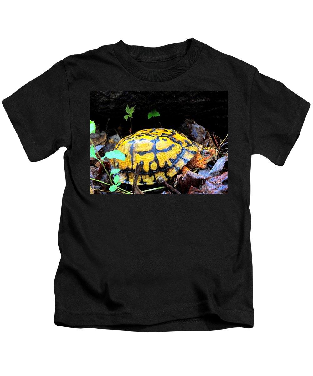 Yellow Box Turtle Kids T-Shirt featuring the photograph Chesapeake Box Turtle by Joshua Bales