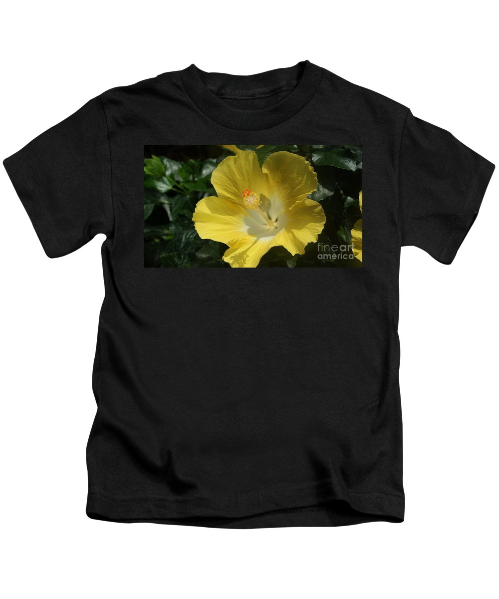 Hibiscus Kids T-Shirt featuring the photograph Close Up Of A Hibiscus...  # by Rob Luzier