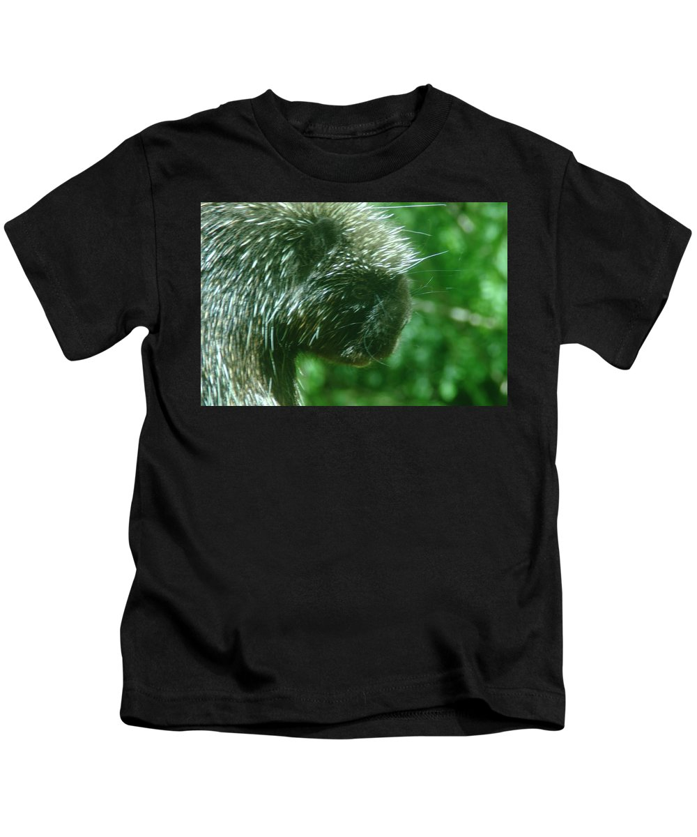 Porcupine Kids T-Shirt featuring the photograph Close Up Of Mr Porcipine by Jeff Swan