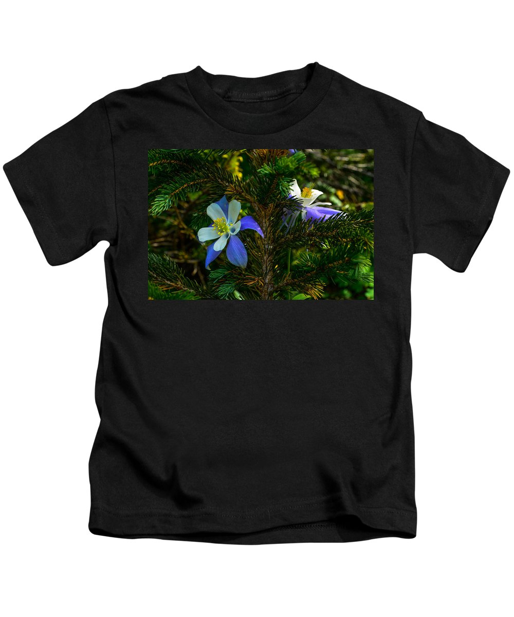Photograph Kids T-Shirt featuring the photograph Columbine Flowers And Pine Tree by Jeff Black