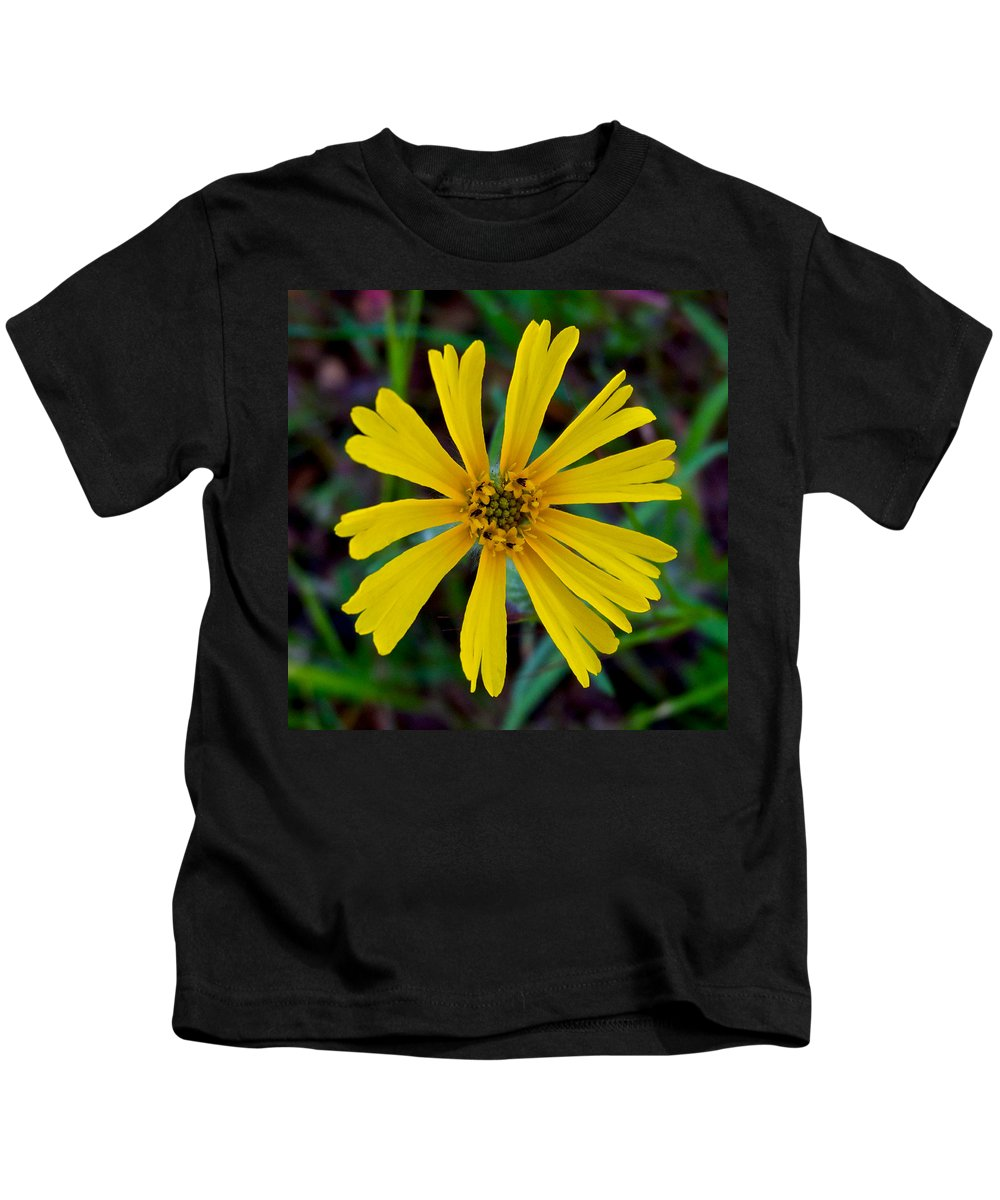 Common Madia Kids T-Shirt featuring the photograph Common Madia In Park Sierra-ca by Ruth Hager