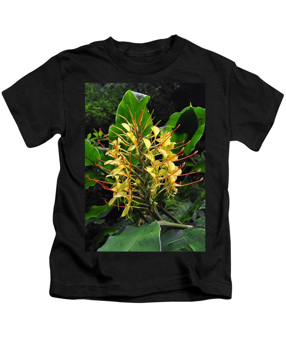 Conteira Kids T-Shirt featuring the photograph Conteira by M Bernardo