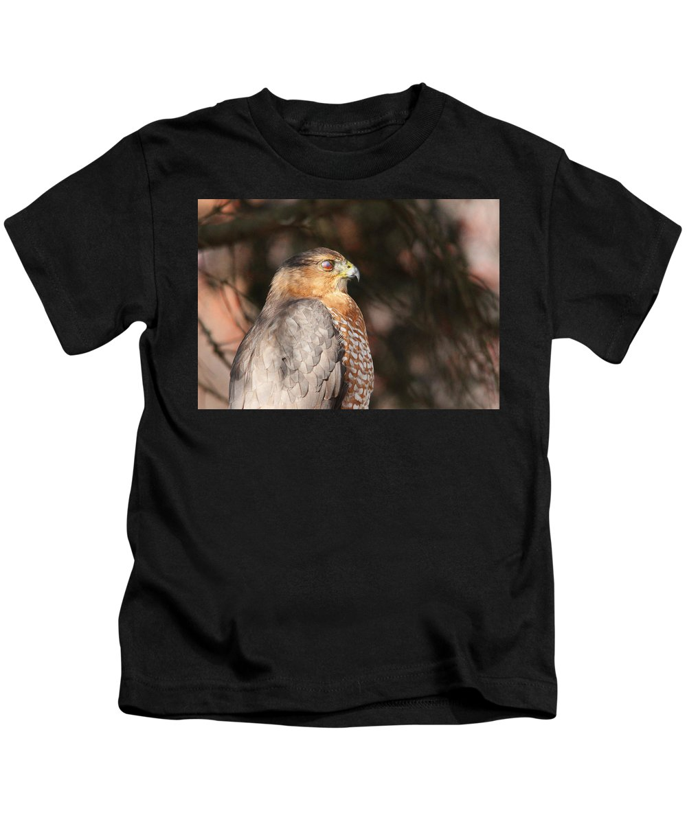 Hawk Kids T-Shirt featuring the photograph Coopers Hawk In Profile by Debbie Oppermann