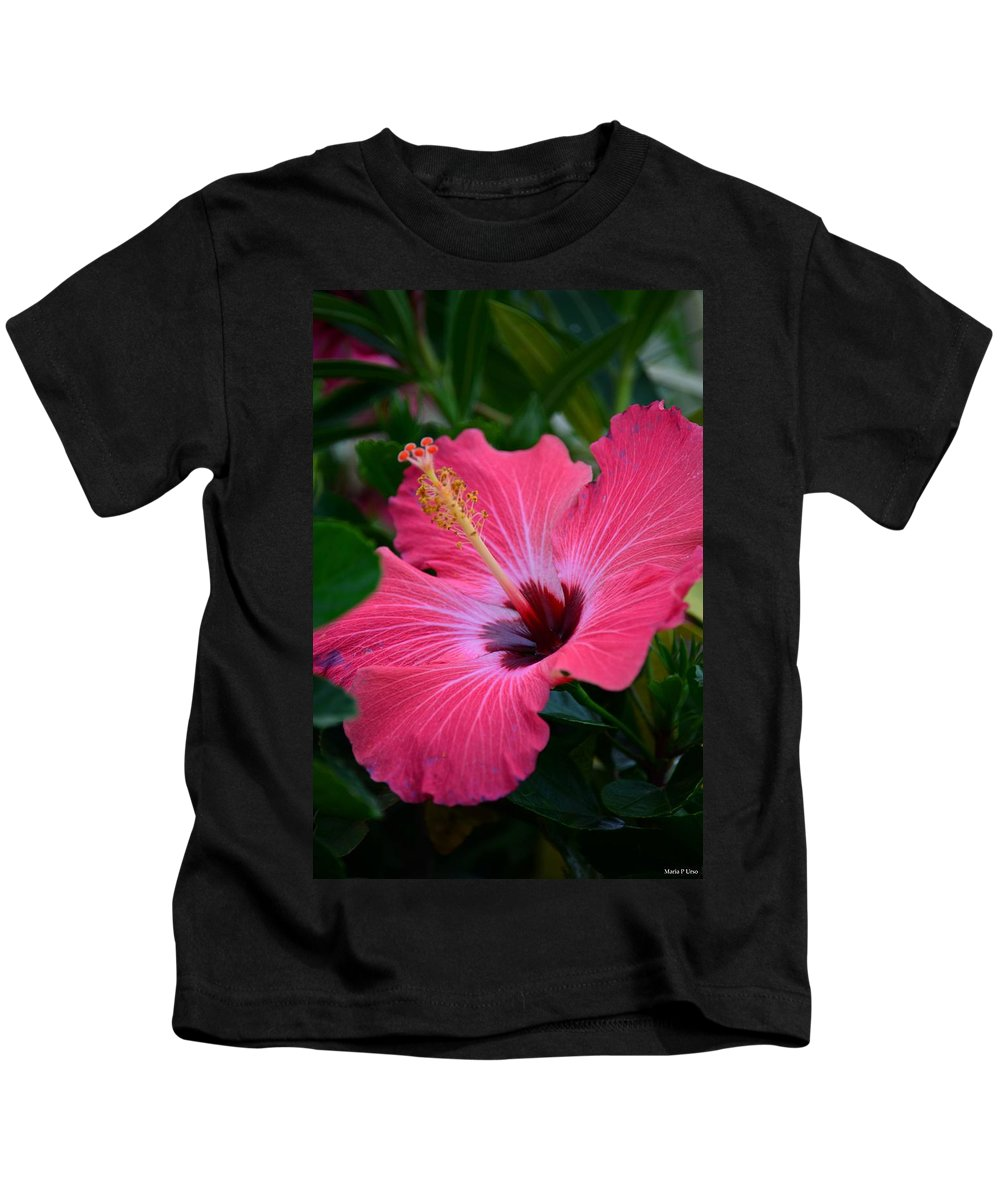 Coral Hibiscus Kids T-Shirt featuring the photograph Coral Hibiscus by Maria Urso