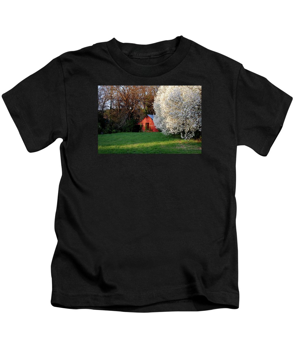 Scenic Kids T-Shirt featuring the photograph Country Gem by Skip Willits