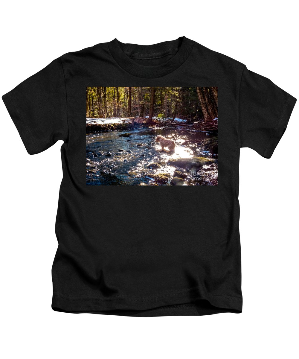 New England Kids T-Shirt featuring the photograph Curiosity In The Berkshires by DAC Photography