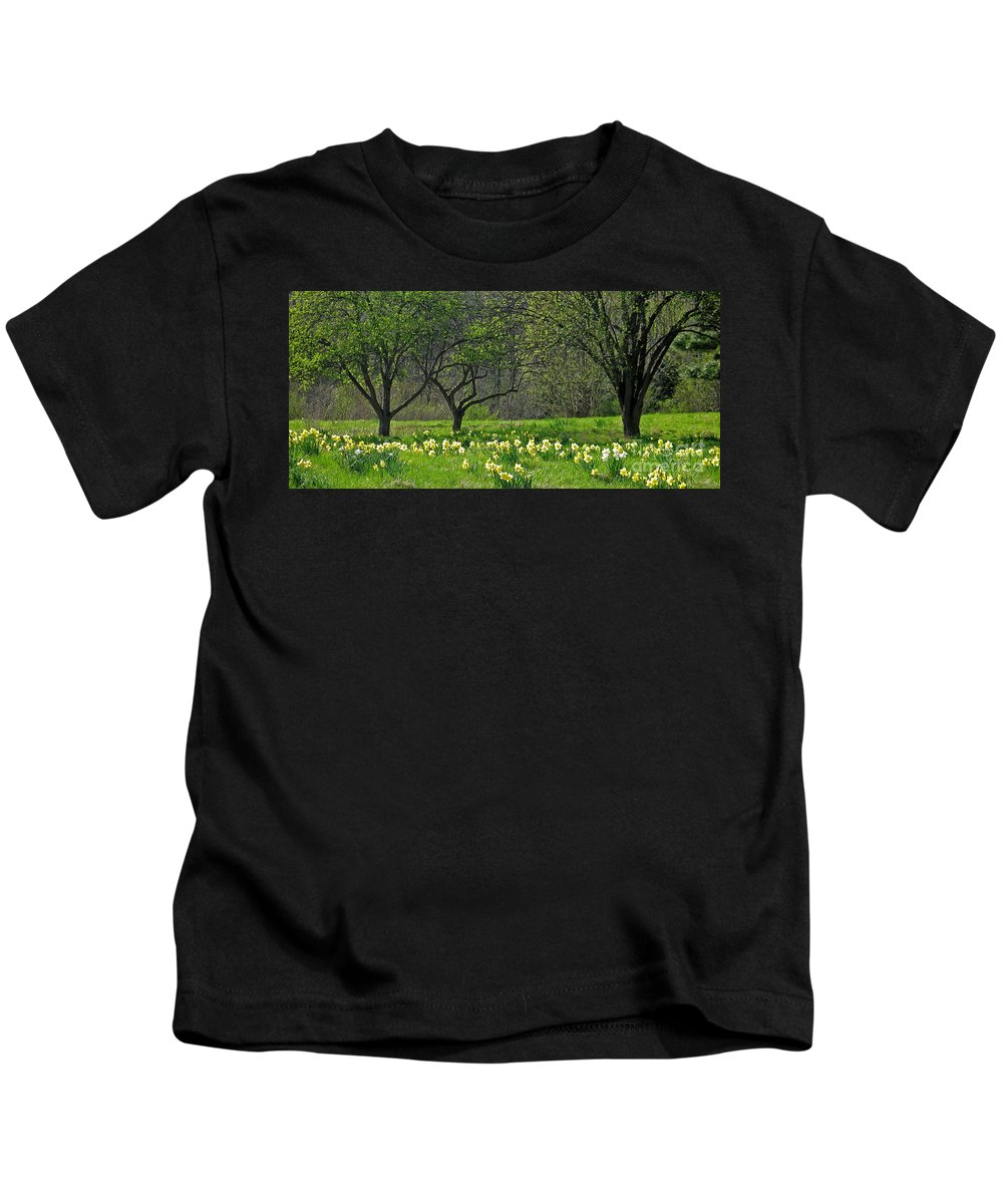 Spring Kids T-Shirt featuring the photograph Daffodil Meadow by Ann Horn