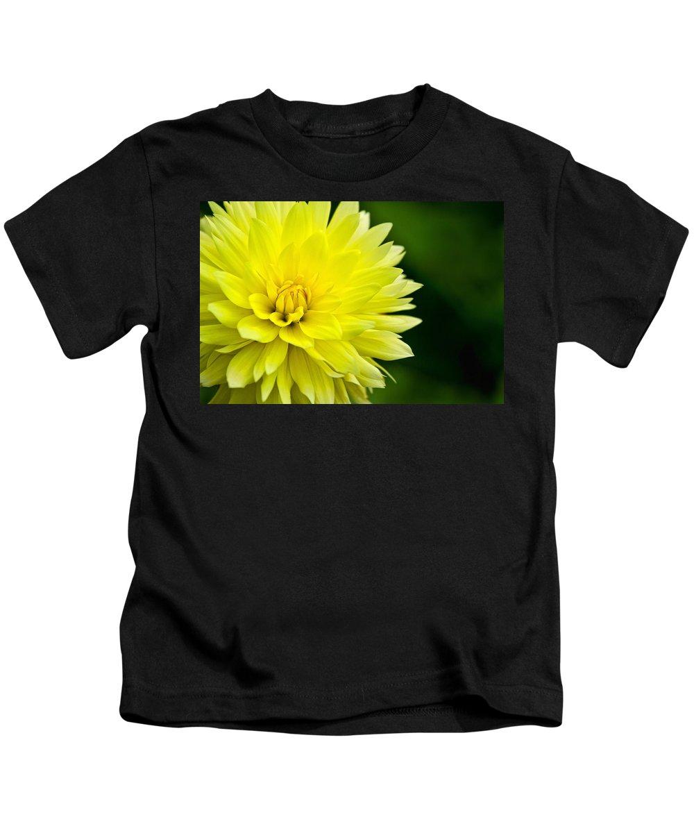 Dahlia Kids T-Shirt featuring the photograph Dahlia Dream by Lindley Johnson