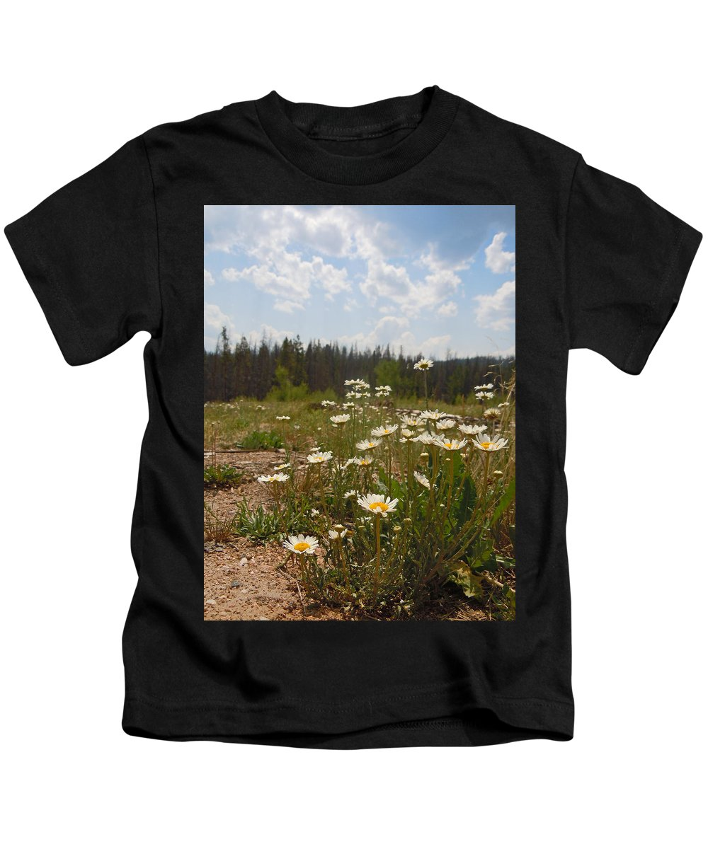 Daisy Kids T-Shirt featuring the photograph Daisy Patch by Heather Coen