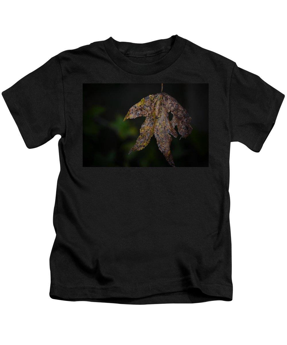 Dangling Dark Sweetgum Kids T-Shirt featuring the photograph Dangling Dark Sweetgum by Maria Urso