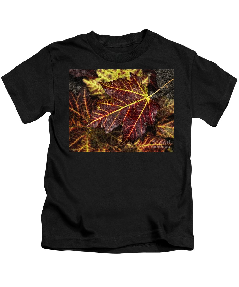 Leaf Kids T-Shirt featuring the photograph Deep Red by Claudia Kuhn