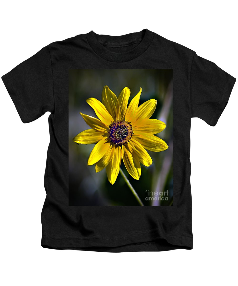 Plants Kids T-Shirt featuring the photograph Desert Sunflower by Robert Bales