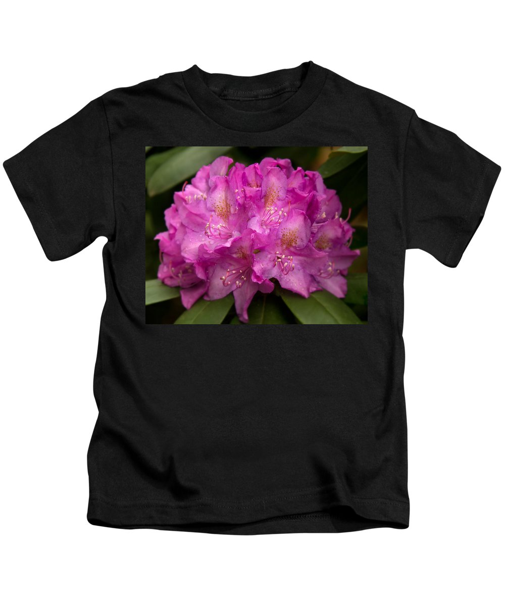 Dewy Rhododendron Kids T-Shirt featuring the photograph Dewy Rhododendron by Jemmy Archer