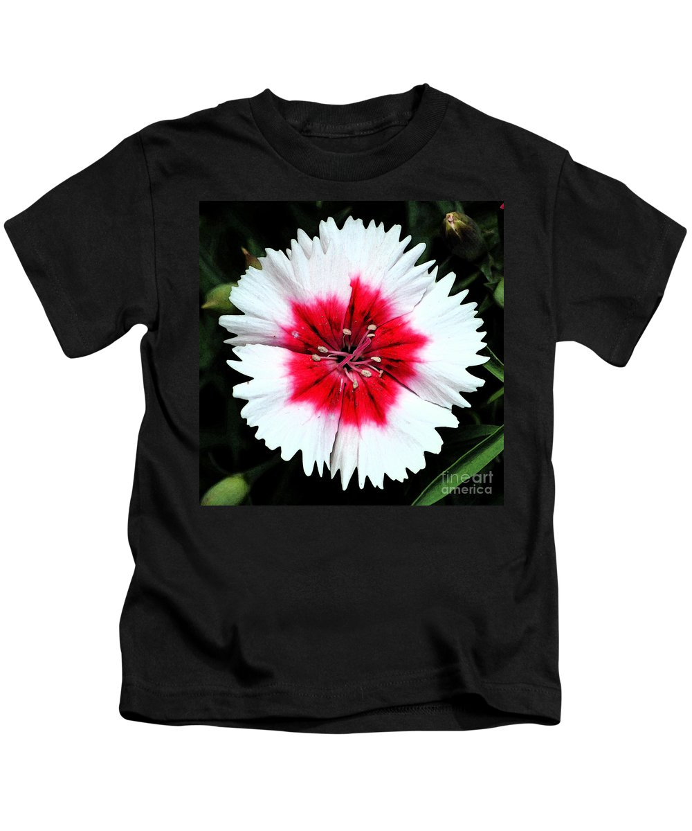 Dianthus Kids T-Shirt featuring the digital art Dianthus Red And White Flower Decor Macro Square Format Fresco Digital Art by Shawn O'Brien