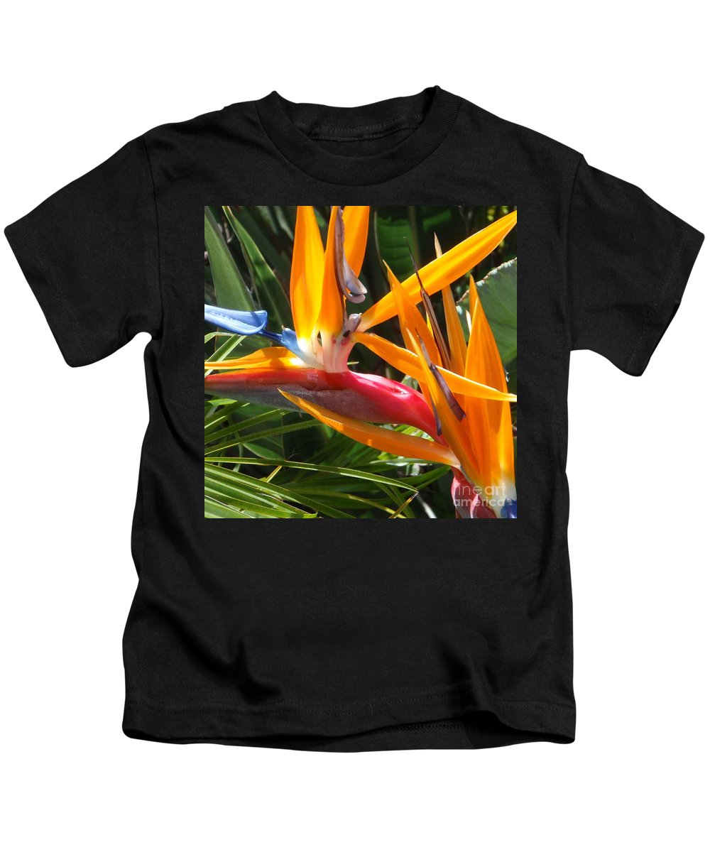 Bird Of Paradise Kids T-Shirt featuring the photograph Double Bird Of Paradise - 1 by Mary Deal