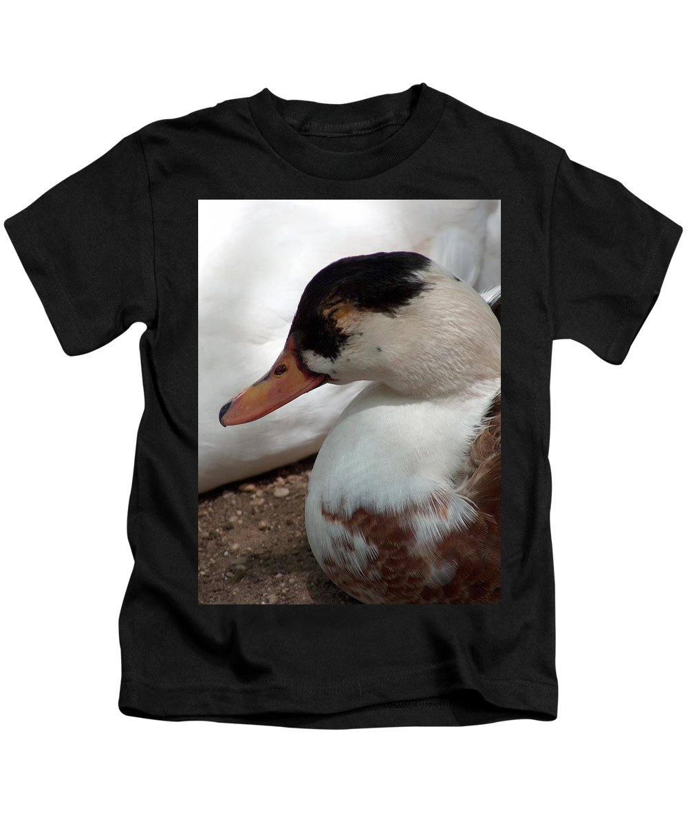 Mark J Dunn Kids T-Shirt featuring the photograph Duck Duck by Mark J Dunn