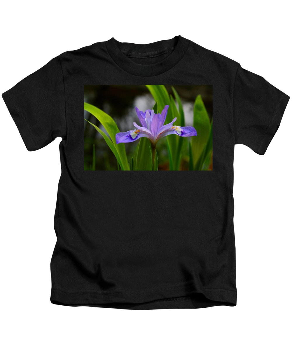 Iris Kids T-Shirt featuring the photograph Dwarf Crested Iris by Kathryn Meyer