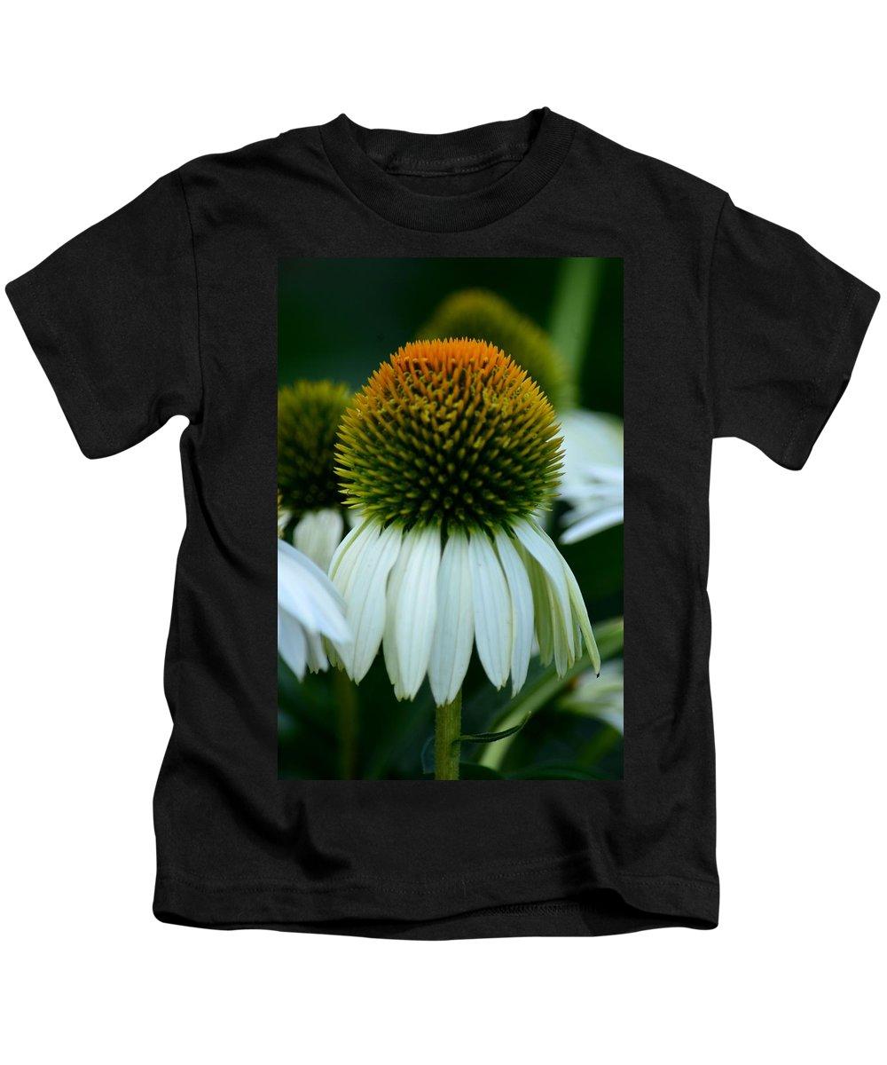 Echinacea Gold Ii Kids T-Shirt featuring the photograph Echinacea Gold II by Maria Urso