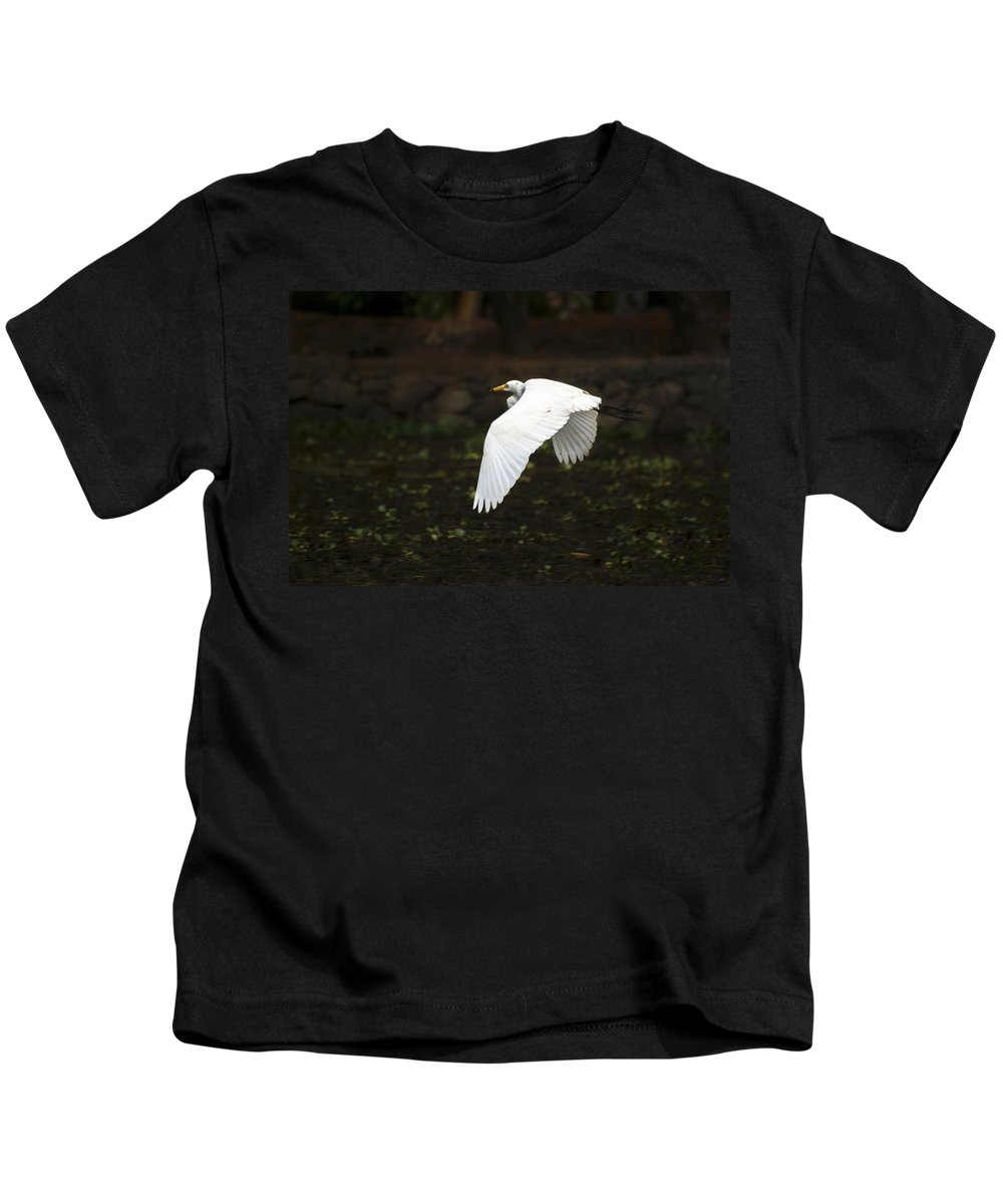 Kerala Kids T-Shirt featuring the photograph Egret In Flight by Helix Games Photography