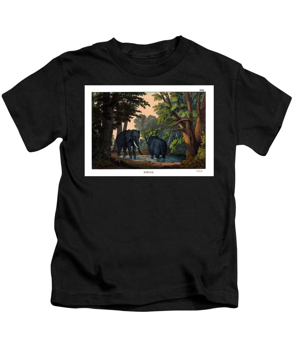 Wild Animals Kids T-Shirt featuring the drawing Elephant by Splendid Art Prints