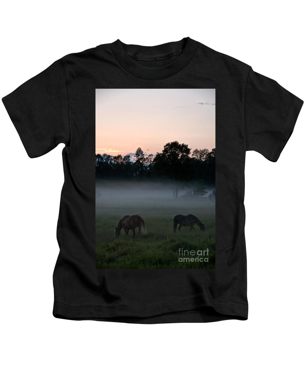 Landscape Kids T-Shirt featuring the photograph Evening Mist by Cheryl Baxter