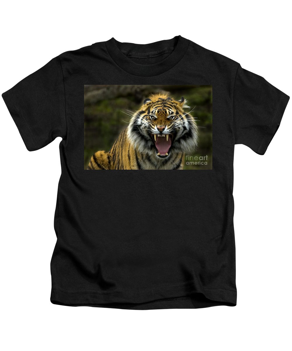 Tiger Kids T-Shirt featuring the photograph Eyes Of The Tiger by Mike Dawson