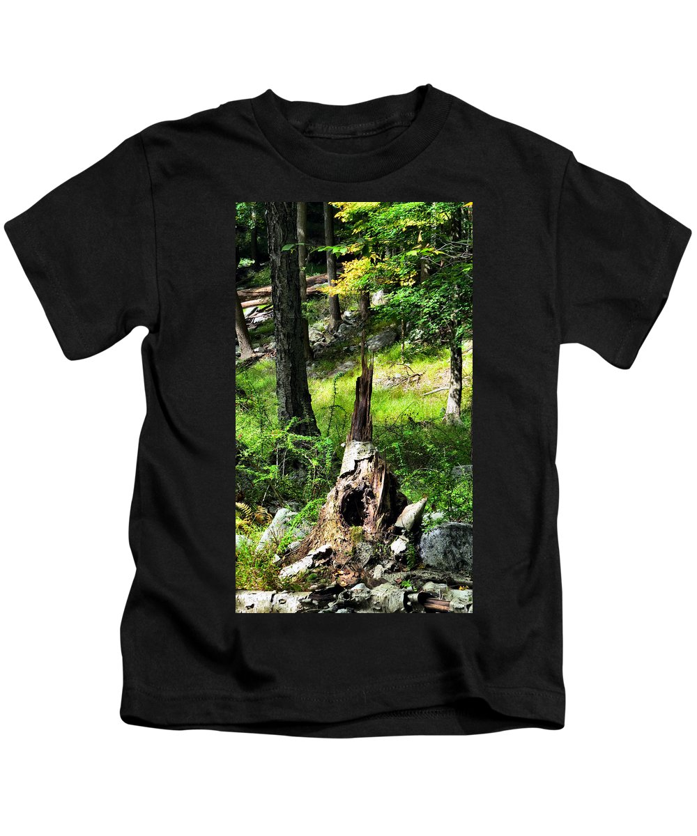 Sky Kids T-Shirt featuring the photograph Fairy Dwelling by Art Dingo