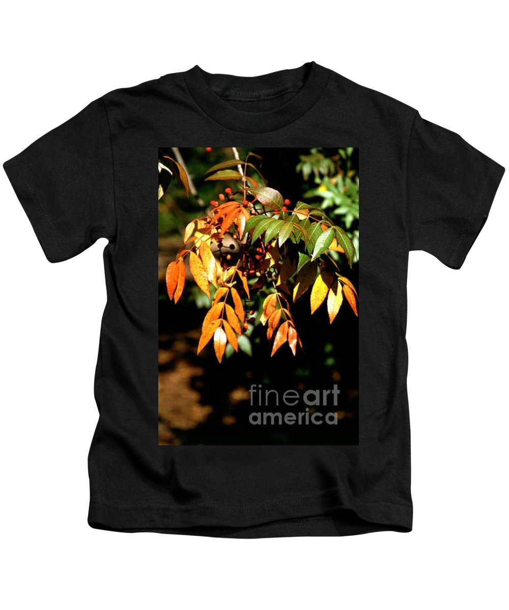 Fall Color Kids T-Shirt featuring the photograph Fall Leaves by Kathy McClure