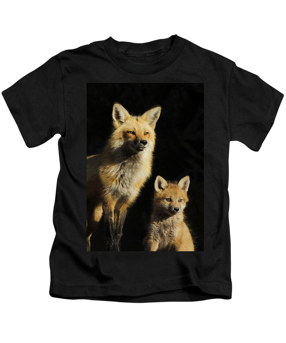Pup Kids T-Shirt featuring the photograph Family Portrait by Mircea Costina Photography
