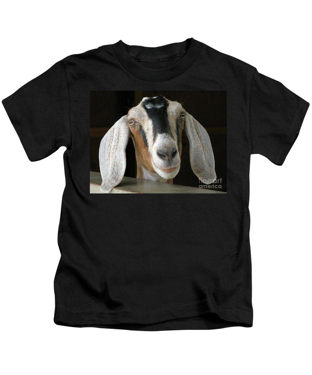 Goat Kids T-Shirt featuring the photograph Farm Favorite by Ann Horn