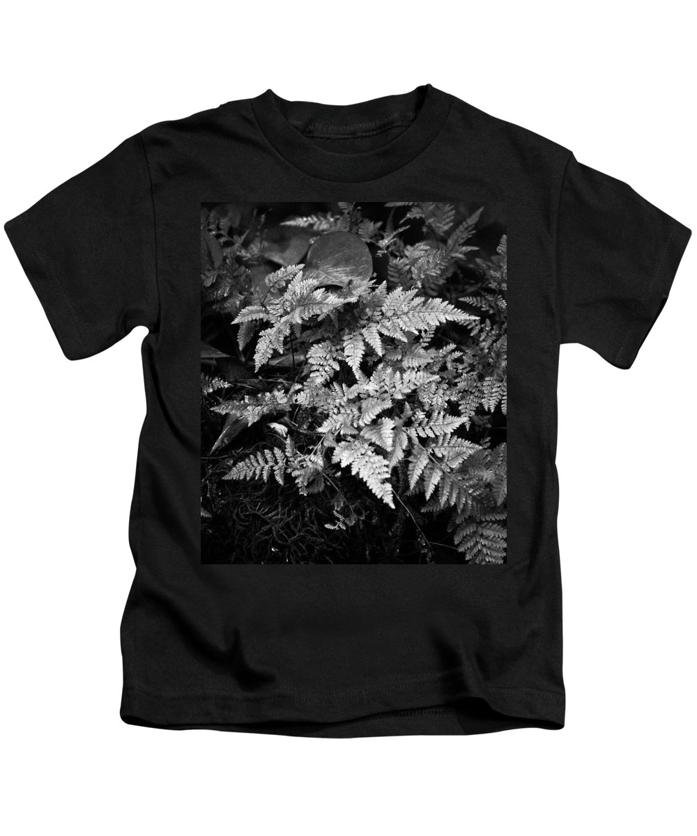 Fern Kids T-Shirt featuring the photograph Fern 8664 by Timothy Bischoff