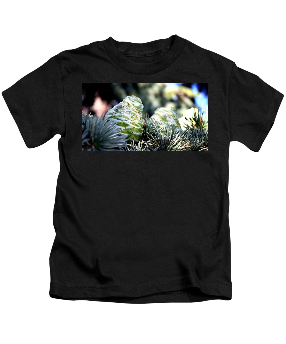 Fir Kids T-Shirt featuring the photograph Fir Cone by Henrik Lehnerer