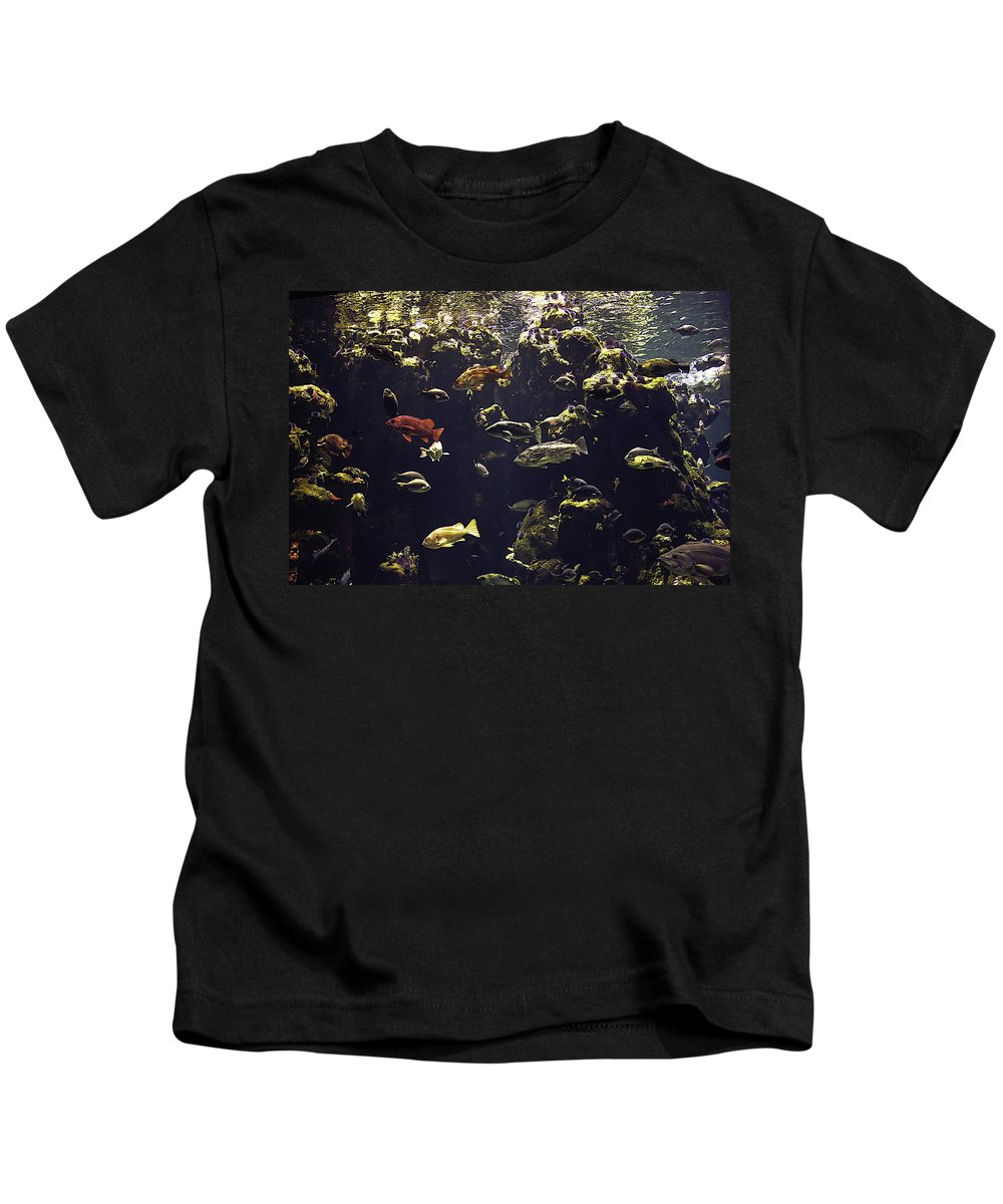 Fish Aquarium Kids T-Shirt featuring the photograph Fish Aquarium by Garry Gay