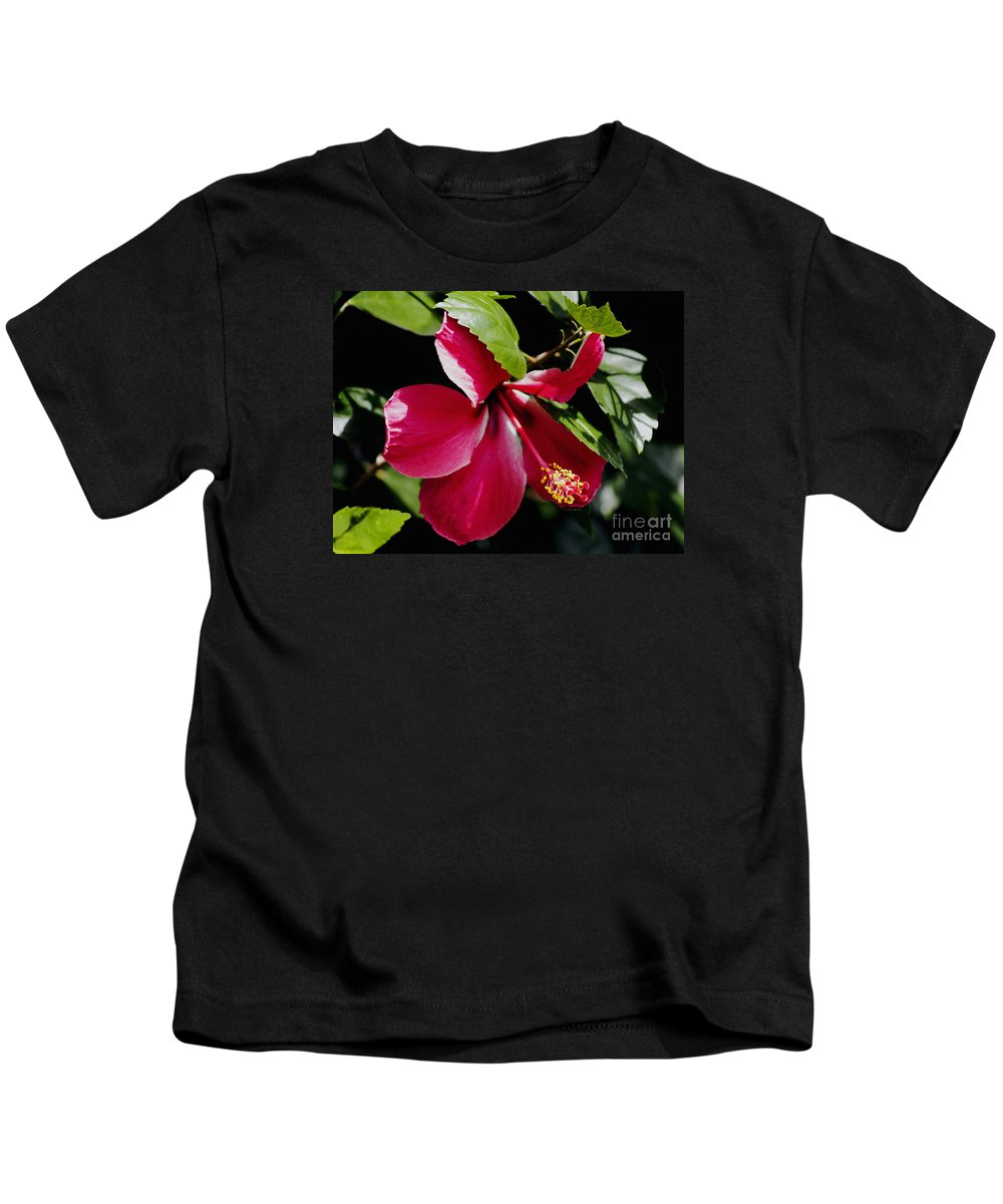 Flower Photography Kids T-Shirt featuring the photograph Flirting by Patricia Griffin Brett
