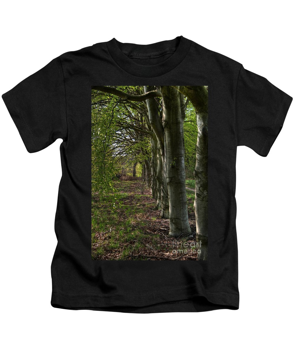 High Kids T-Shirt featuring the photograph Forest Walk Hdr by Antony McAulay