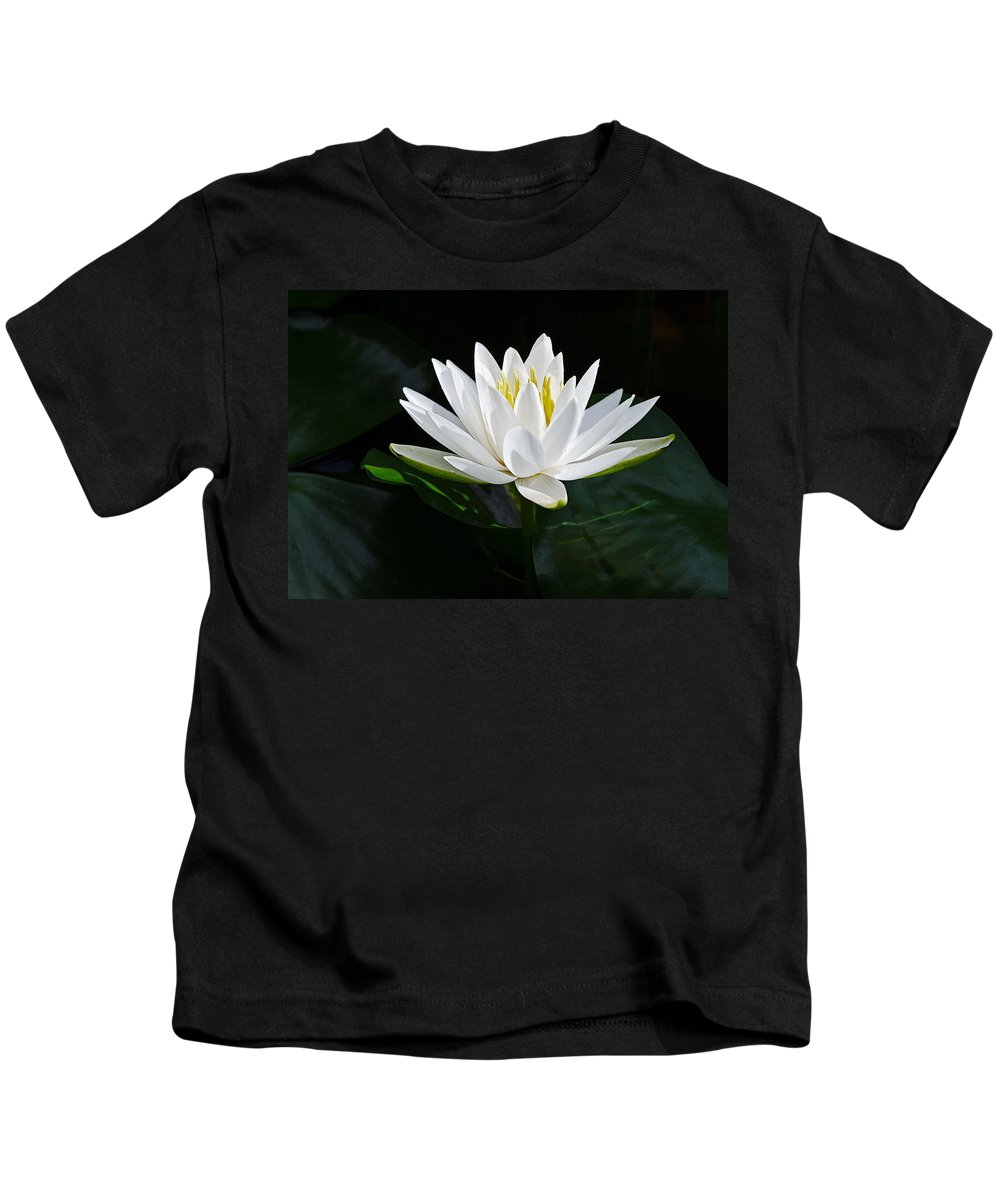 Fragrant Water-lily Kids T-Shirt featuring the photograph Fragrant Water-lily by Stephen Gingold