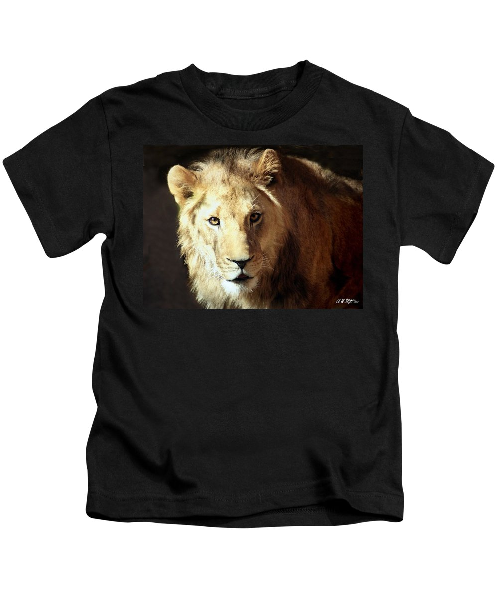 Lions Kids T-Shirt featuring the photograph Friendly Encounter by Bill Stephens