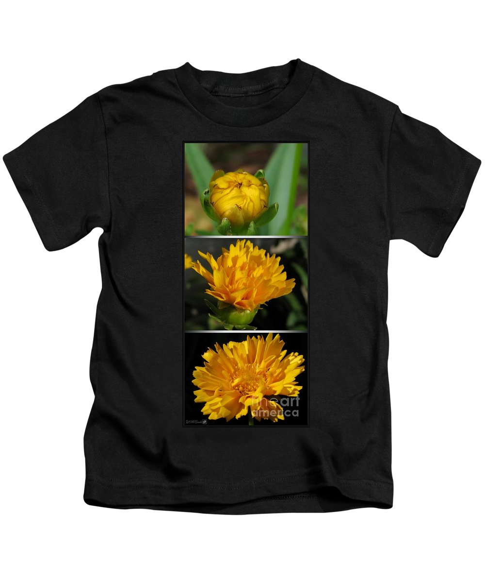 Coreopsis Kids T-Shirt featuring the photograph From Bud To Bloom - Coreopsis Named Early Sunrise by J McCombie