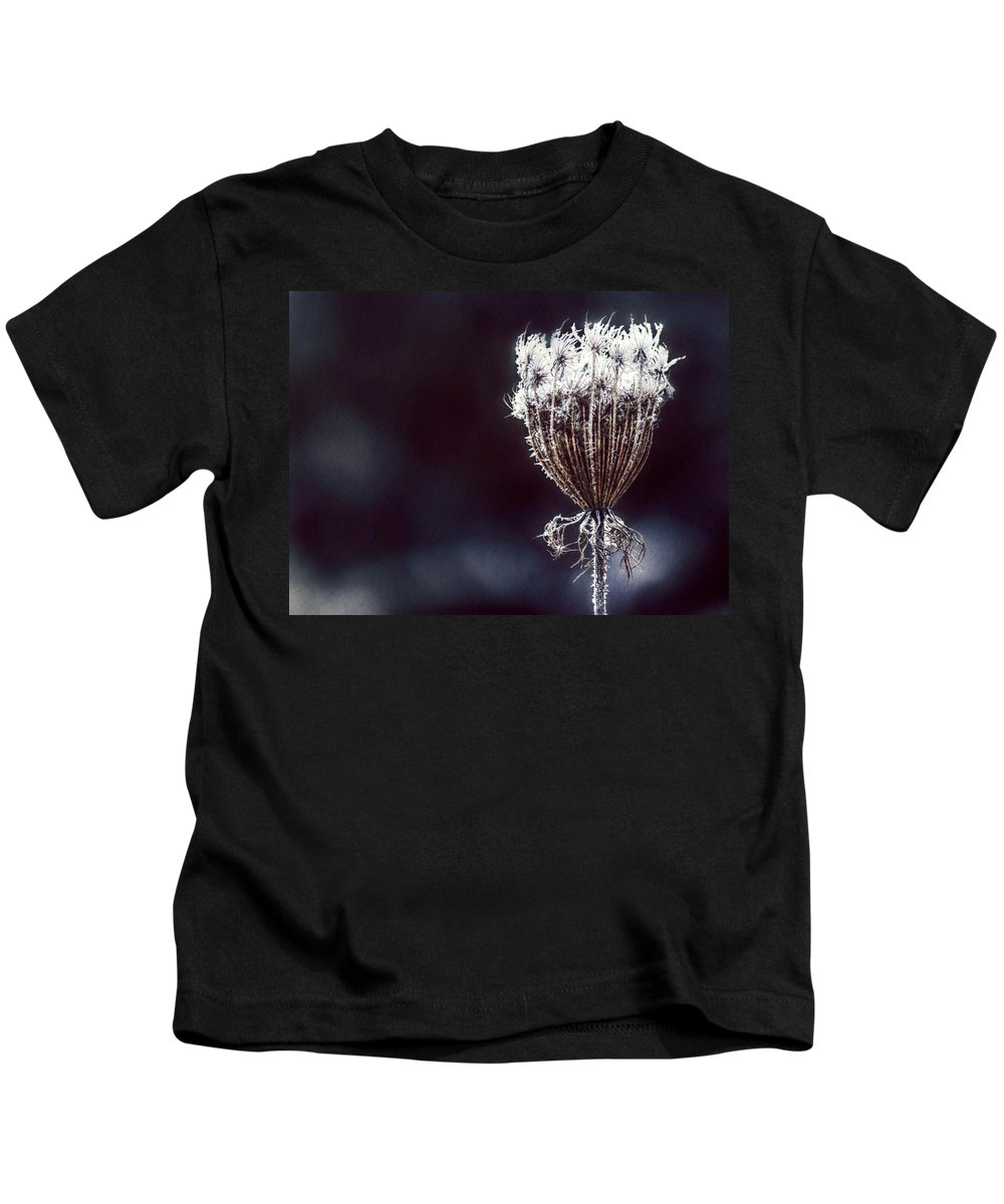 Queen Anne's Lace Kids T-Shirt featuring the photograph Frozen Wisps by Melanie Lankford Photography