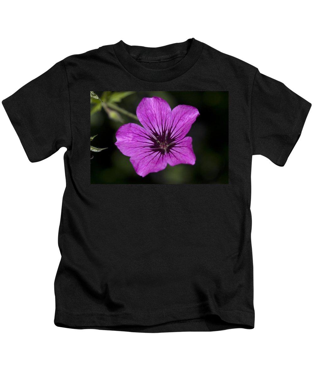 Geranium Sanguinium Kids T-Shirt featuring the photograph Geranium Sanguinium by Richard Thomas