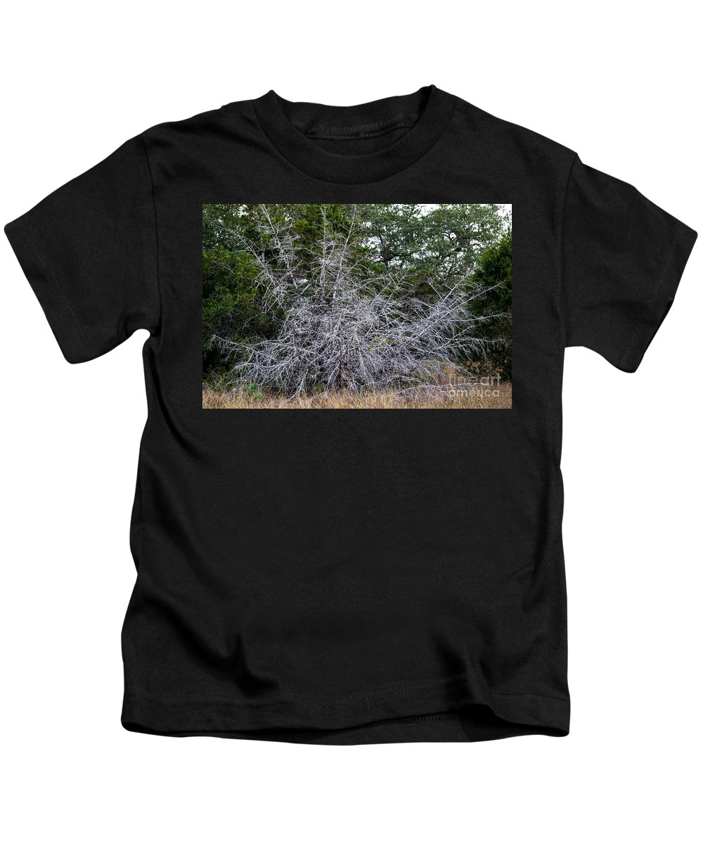 Ghost Trees Kids T-Shirt featuring the photograph Ghost Trees 1 by Gary Richards