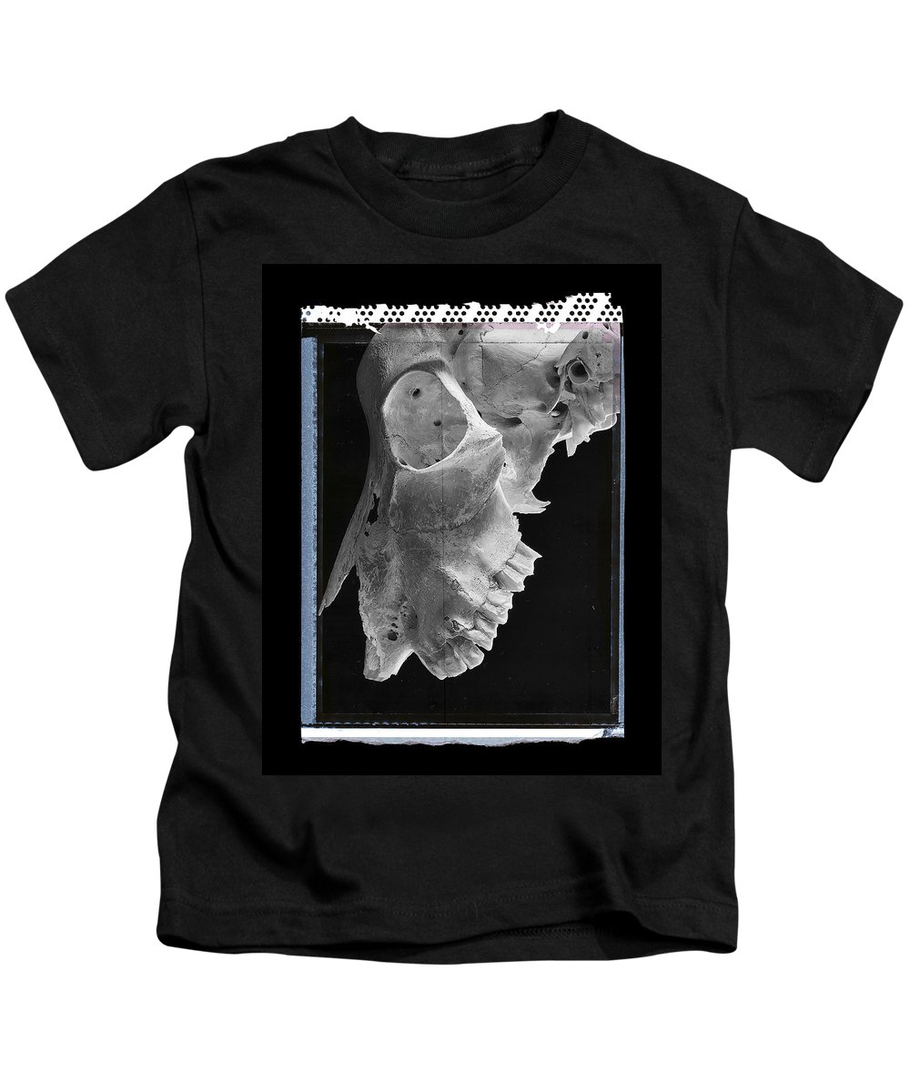 Bones Kids T-Shirt featuring the photograph Goat Skull Detail by Gary Warnimont