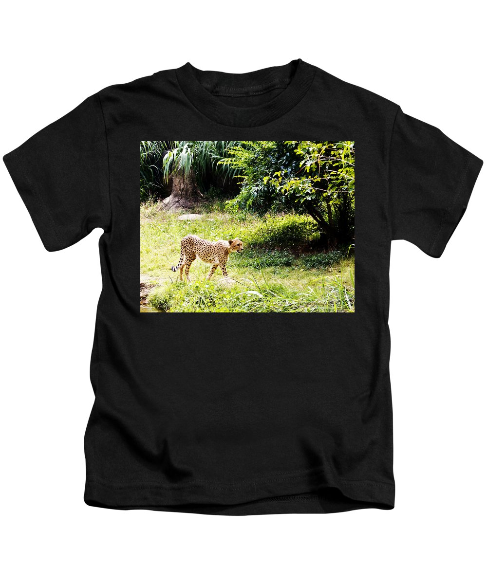 Cheetah Kids T-Shirt featuring the photograph Gone In 3 Seconds 1 by Walter Herrit