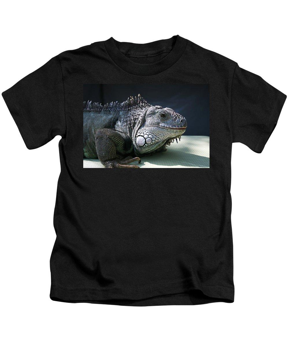 Green Iguana Kids T-Shirt featuring the photograph Green Iguana 1 by Ellen Henneke