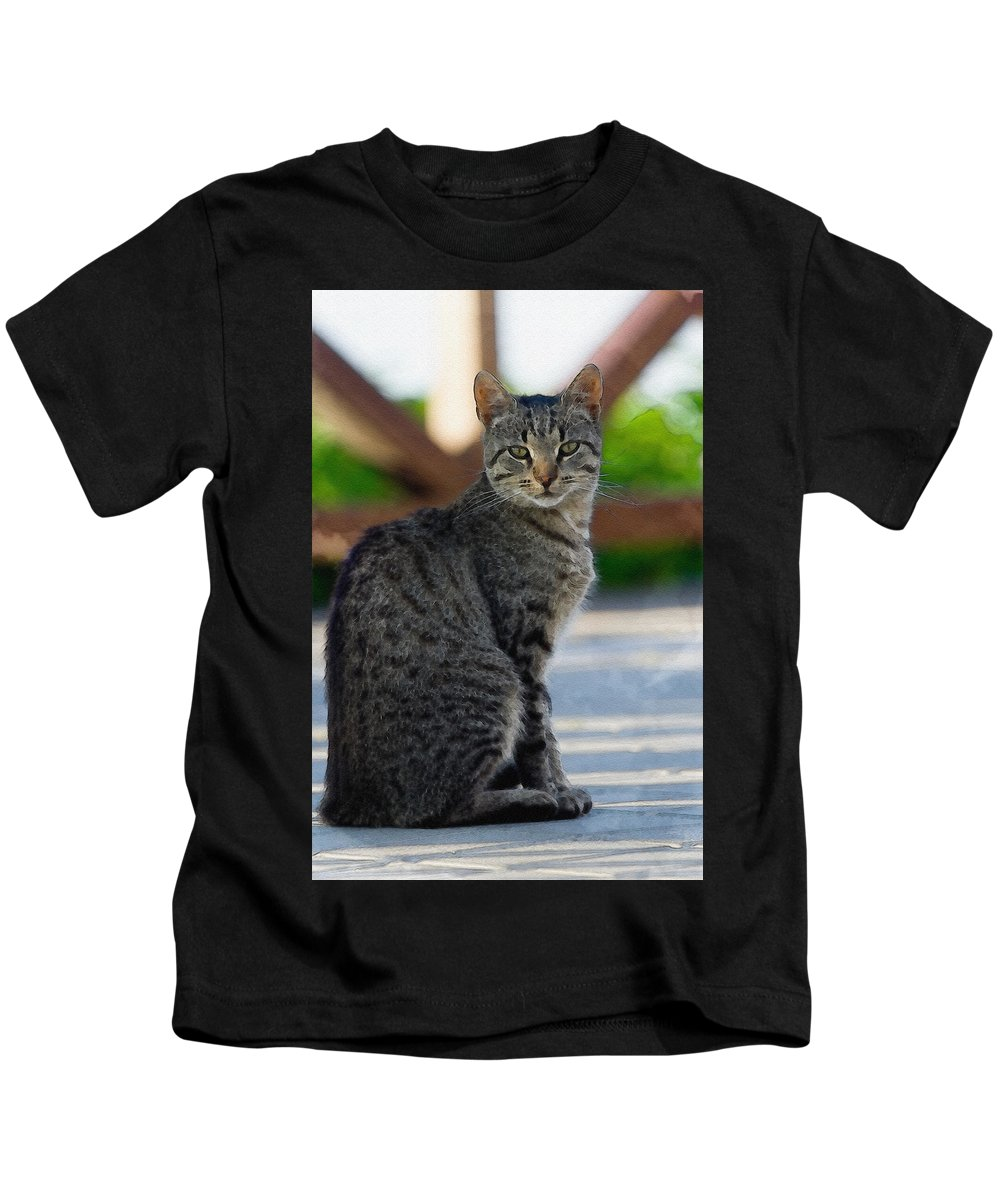 Cat Kids T-Shirt featuring the photograph Grey Cat by Pati Photography