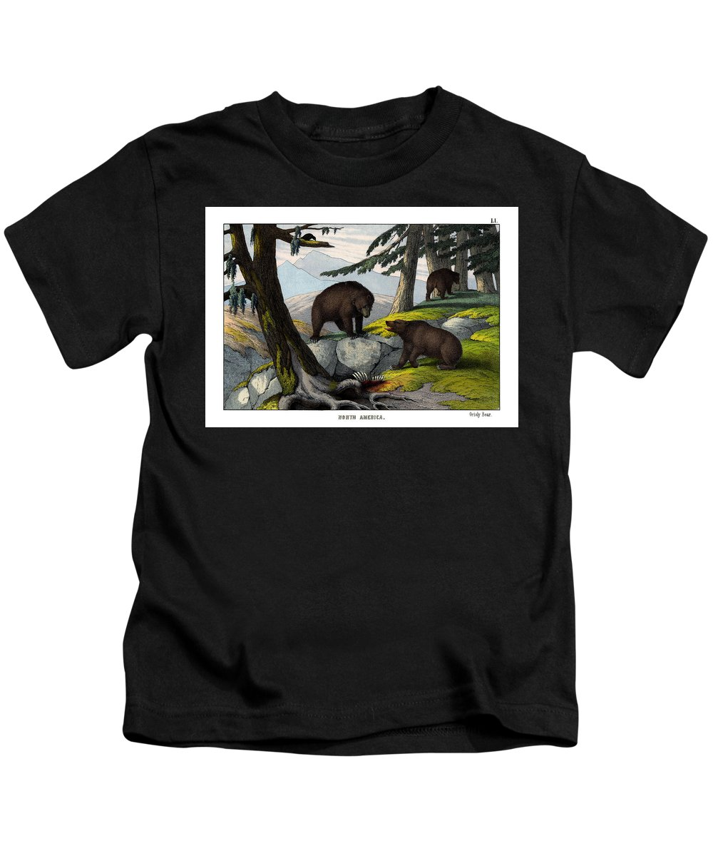 Wild Animals Kids T-Shirt featuring the drawing Grisly Bear by Splendid Art Prints