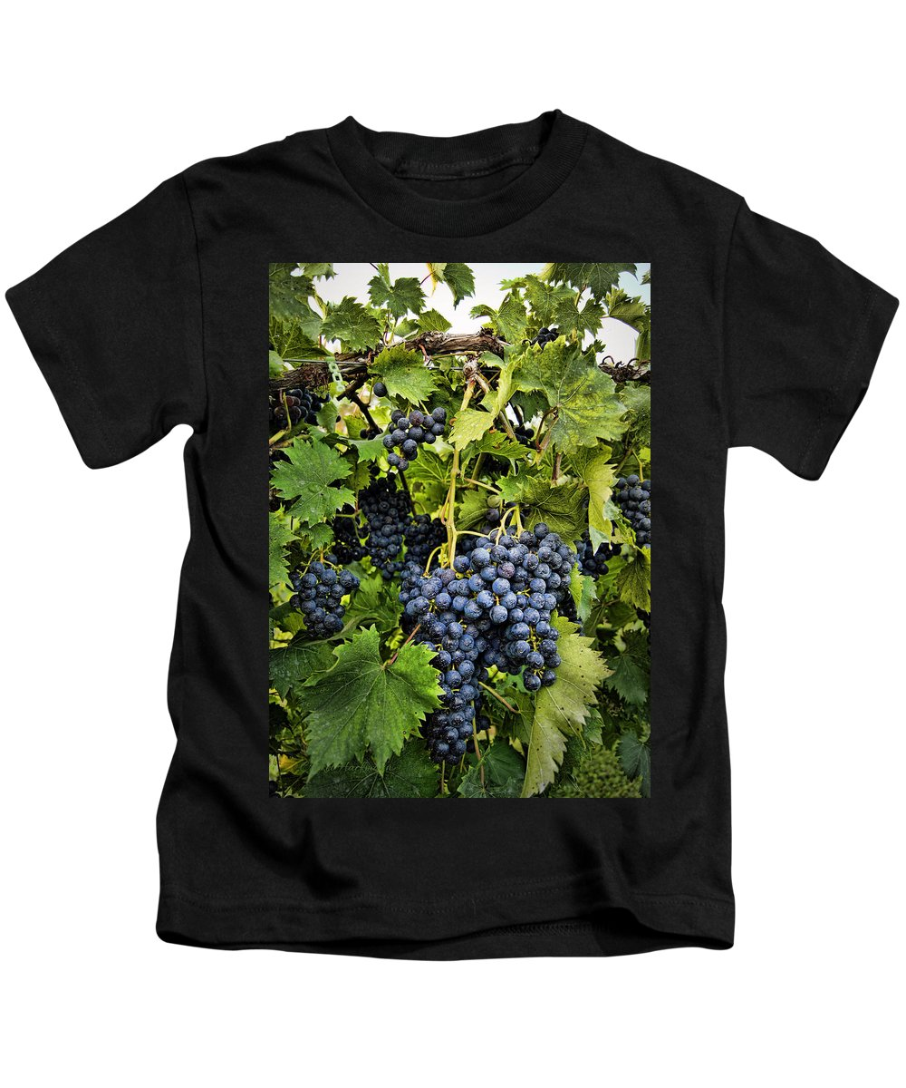 Grape Kids T-Shirt featuring the photograph Harvest Divine by Cricket Hackmann